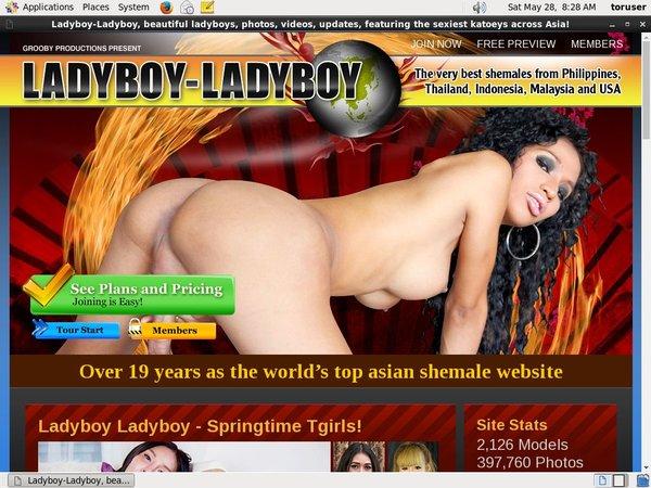 Ladyboy Ladyboy With Direct Debit