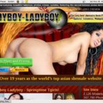 Ladyboy Ladyboy Network