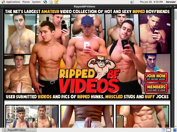 Rippedbfvideos Porn Site